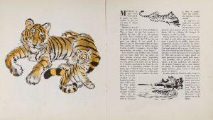 CjoJe70VAAAJlLyanimaux tigres